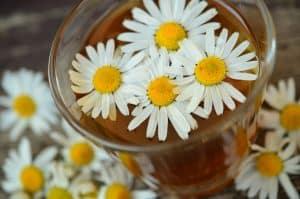 natural toner chamomile