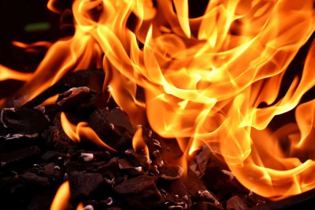 natural world fire