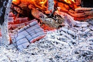 Wood ash is high in calcium.